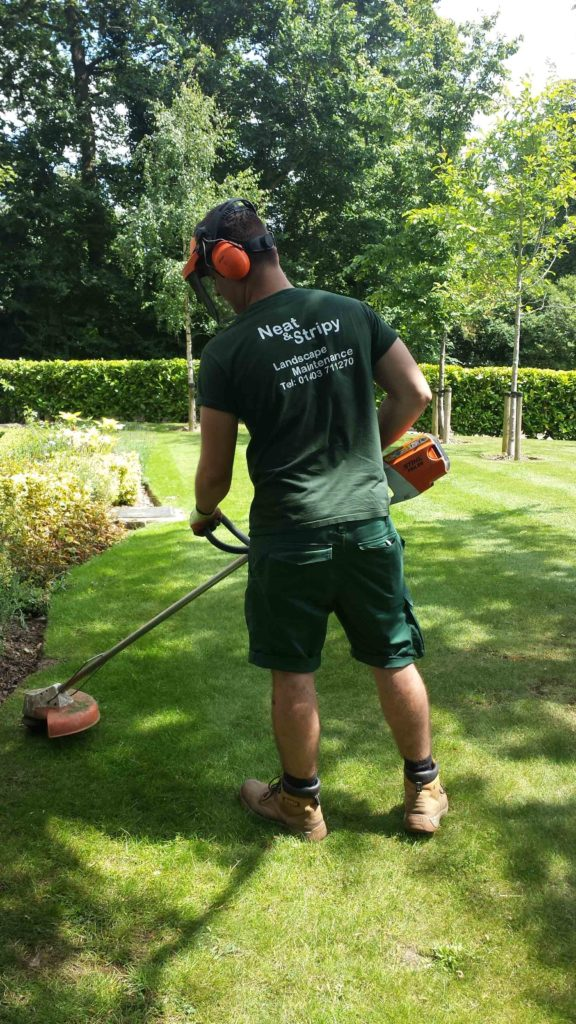 Neat and stripy only use Professional Stihl Strimmers